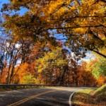Blue Ridge Parkway Asheville, NC